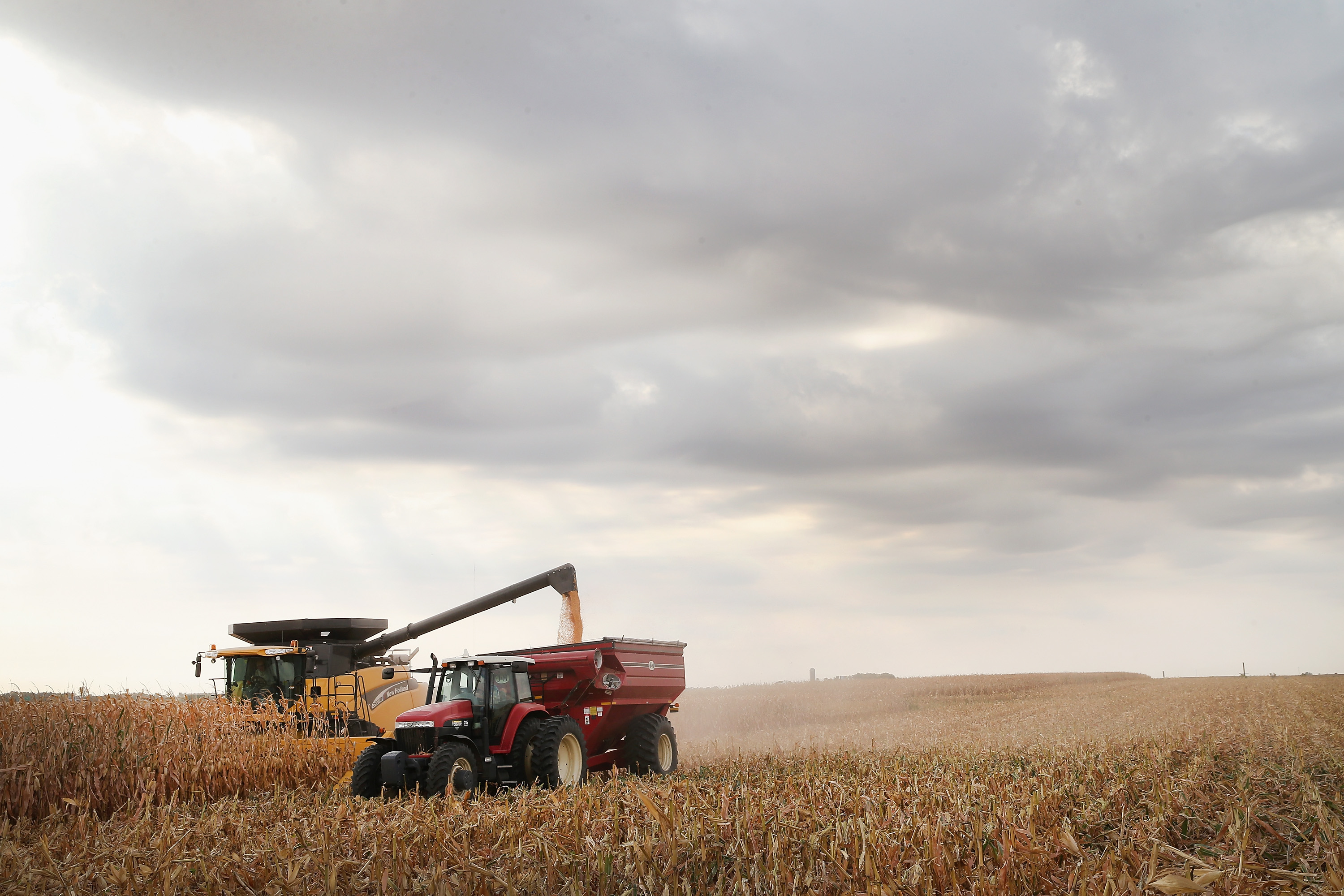 Farmers harvest a field of corn near Salem, S.D., in 2013. A robust domestic biofuels industry, including ethanol, would benefit farmers and our rural economy as well as the environment, public health and the nation's energy security, Daschle writes. (Scott Olson/Getty Images file photo)